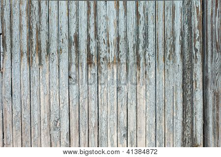 grungy white background of natural wood