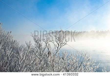Misty Winter Near A River