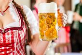pic of stein  - Young people in traditional Bavarian Tracht in restaurant or pub - JPG