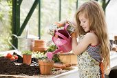picture of young girls  - Woman and daughter tending to plants in home green house - JPG
