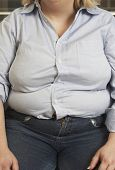 pic of pot-bellied  - Midsection of an obese woman in casual wear - JPG