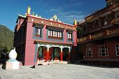 Drikung Kagyu Gompa In Holy Buddhist Place Rewalsar, Mandi,himachal Pradesh,india