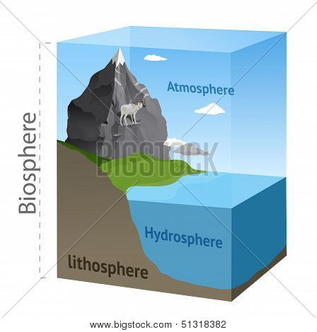 Biosphere illustration in vector