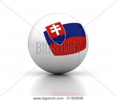 Slovakian Volleyball Team