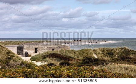 Grenen Beach Is The Most Northern Part Of Denmark