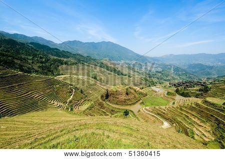 Chinese Longji Rice Terraces