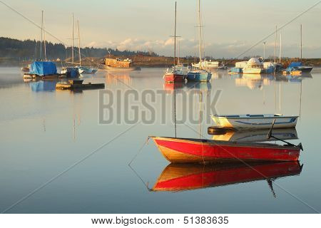 Tranquil Anchorage, Nicomekl River, British Columbia