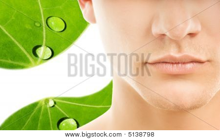 Close-up Shot Of A Part Of Man's Face Over Green Leaf Background