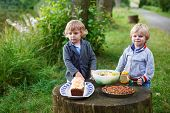 Two Little Boys Picnicking In Forest Near Lake In Summer