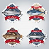 image of bass fish  - Set of labels with marketable fish - JPG