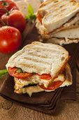 Homemade Tomato And Mozzarella Panini