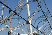 stock photo of razor  - Sharp razor wire tangled with barbwire on a secure fence - JPG