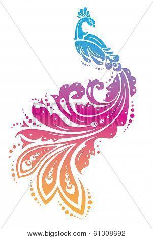 vivid peacock/ fire bird