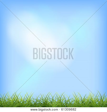 Green grass blue sky natural background