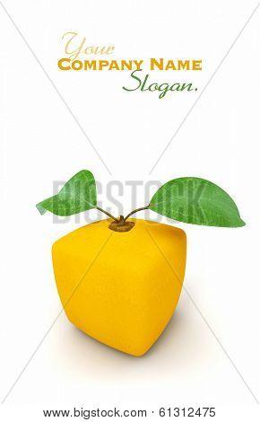 3D rendering of a cubic orange fruit