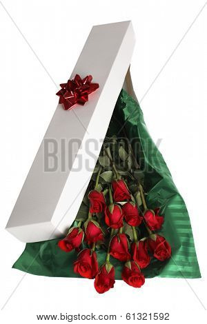 long skinny white gift box with red bow, green tissue paper, and a dozen roses on white background