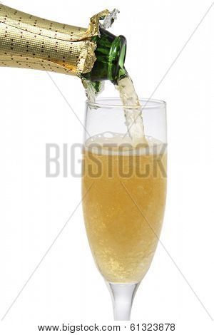 champagne pouring into tall glass on white