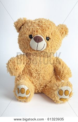 Old patched brown teddy bear isolated on white