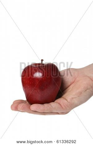 red apple in hand on white background