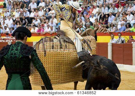 Lancer Vs Bull