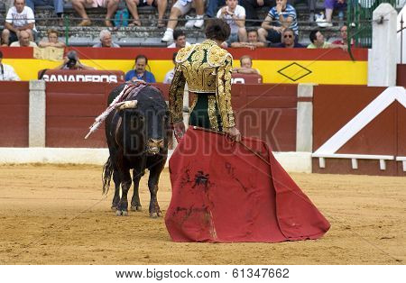 Passess Of The Bullfighter Israel Lancho