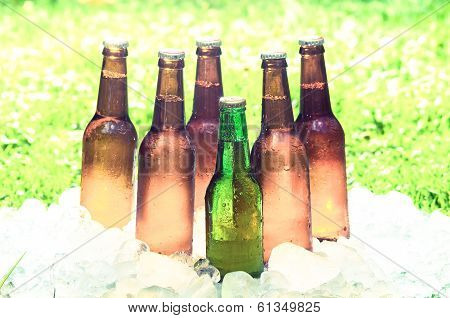 beer and ice,  out of focus grass with an intense shinny light