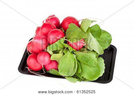 Bundle Of Garden Radish