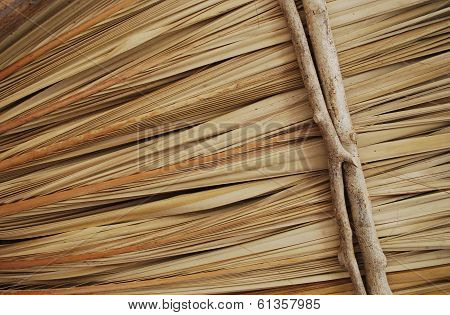 Palapa texture background