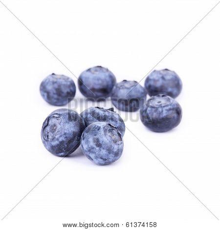 Bilberry Closeup On White