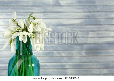 Beautiful snowdrops in bottle, on wooden background