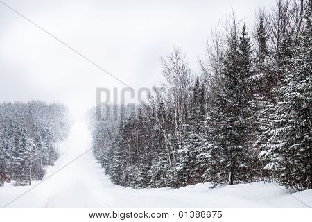 Country Road During A Snowstorm