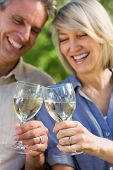 Cheerful couple toasting wine glasses in park