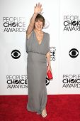 LOS ANGELES - JAN 8: Nikki DeLoach at The People's Choice Awards at the Nokia Theater L.A. Live on J