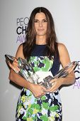 LOS ANGELES - JAN 8: Sandra Bullock at The People's Choice Awards at the Nokia Theater L.A. Live on
