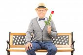 Gentleman holding a red rose seated on bench isolated on white background