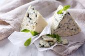Tasty blue cheese with basil on paper