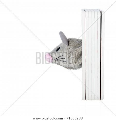 Toy Mouse Head Isolated On White