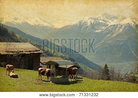 Small farm in Swiss alps.  Bodmen, Valais, Switzerland. Added paper texture