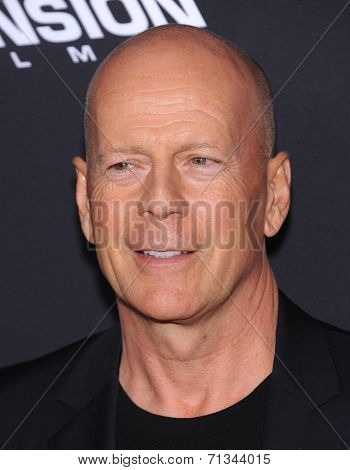LOS ANGELES - AUG 19:  Bruce Willis arrives to the