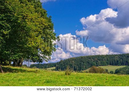 Green Country Landscape.
