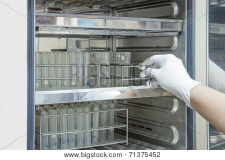 Scientist Putting Sample Into Incubator In Laboratory