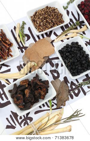 Traditional chinese herbal medicine ingredients on not real hieroglyphs, close-up
