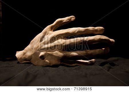 bony hand