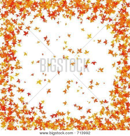 Falling Fall Leaves