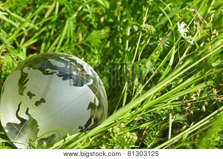 glass globe in the grass