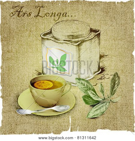 hand drawing of set of tea. vector illustration