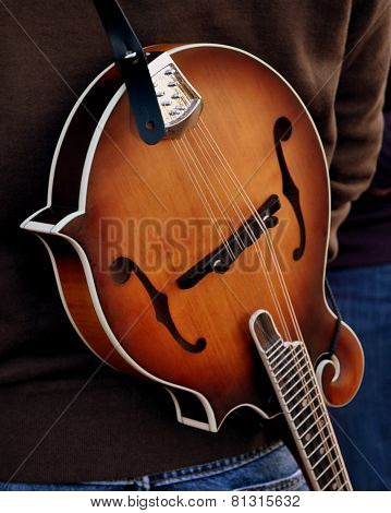 Musical Mandolin