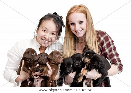 Women Holding Puppies