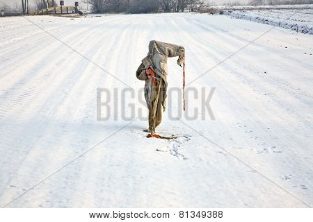 Sad, Ragged  And Freezing Scarecrow In Winter On The Snowfield