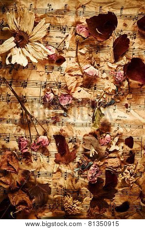 Dry Roses On Vintage Paper Background
